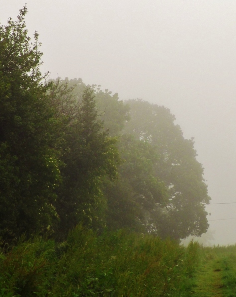 Another fine English summers day
